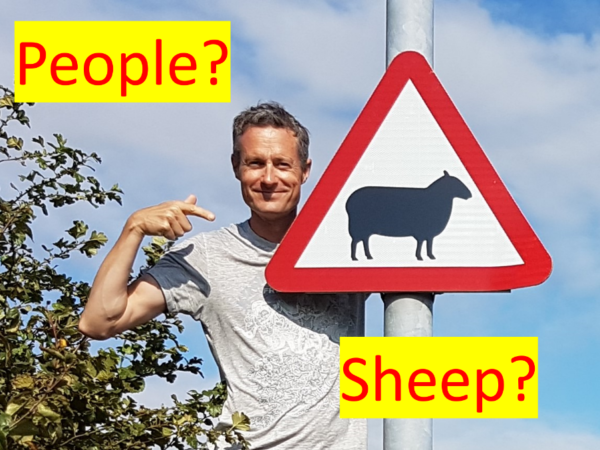 More sheep or people?