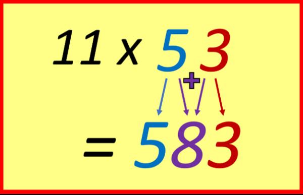 Eleven 11x53